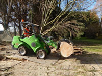 Tree surgeons using Avant tractors