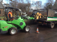 Tree surgeons using Avant tool attachments